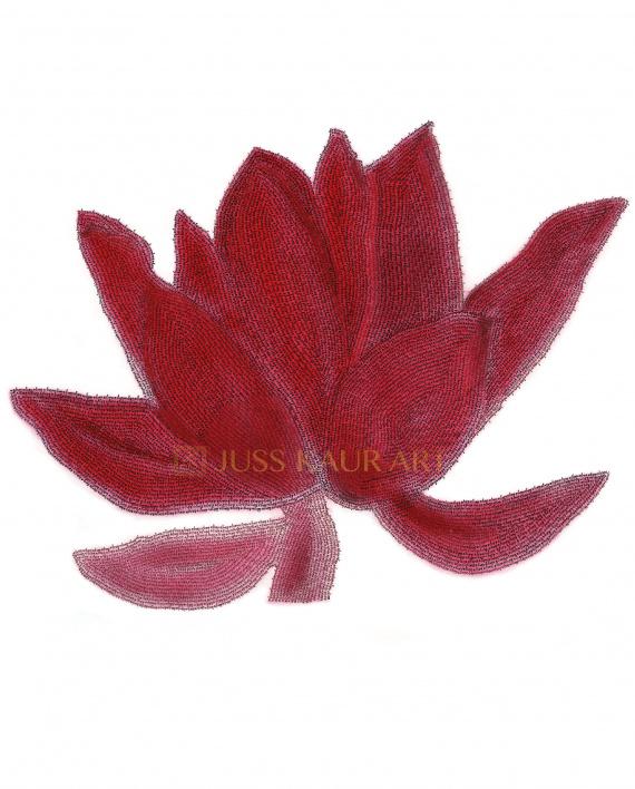 red-rose-waheguru